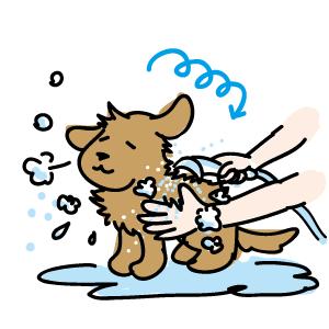 ペット用シャワー水栓