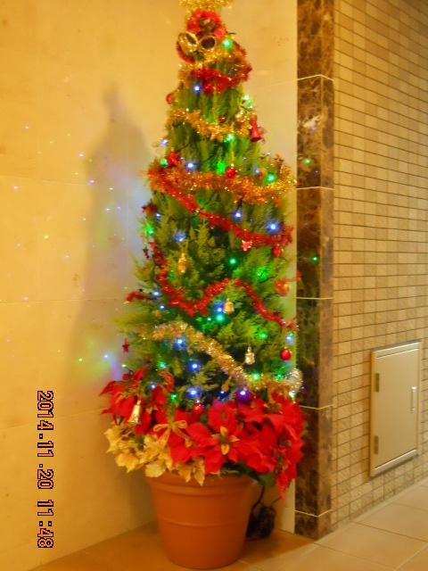 エントランス クリスマスツリー