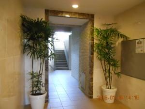 フォンテーヌ駒沢 エントランスホール観葉植物