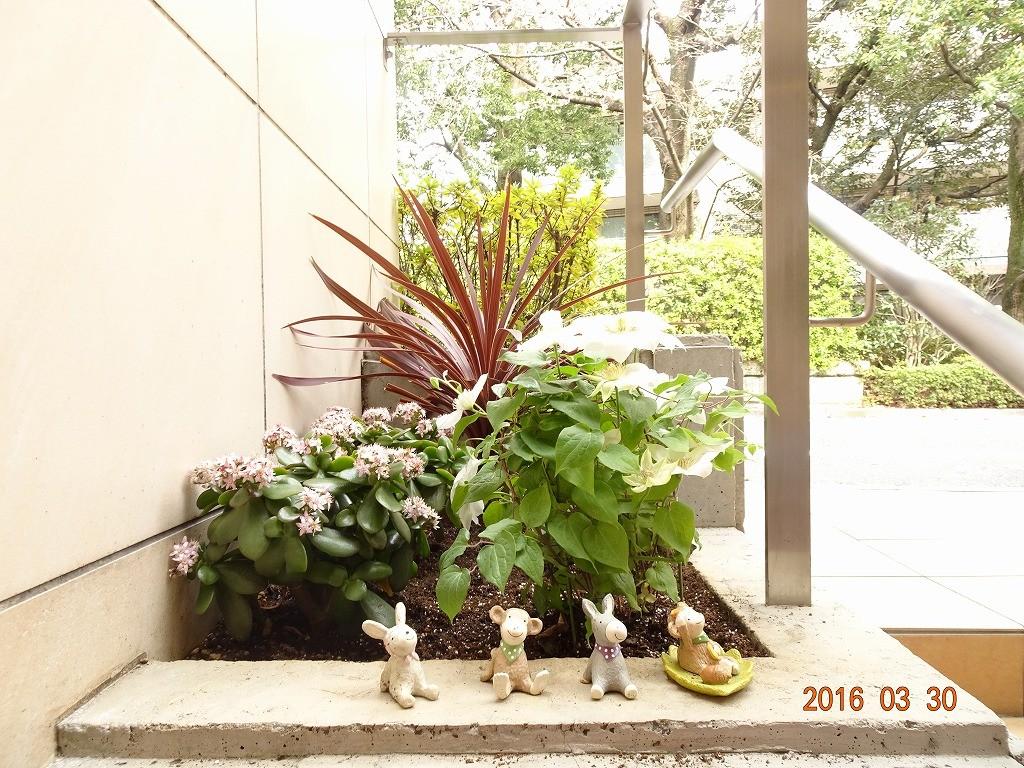 フォンテーヌ駒沢 エントランス花壇