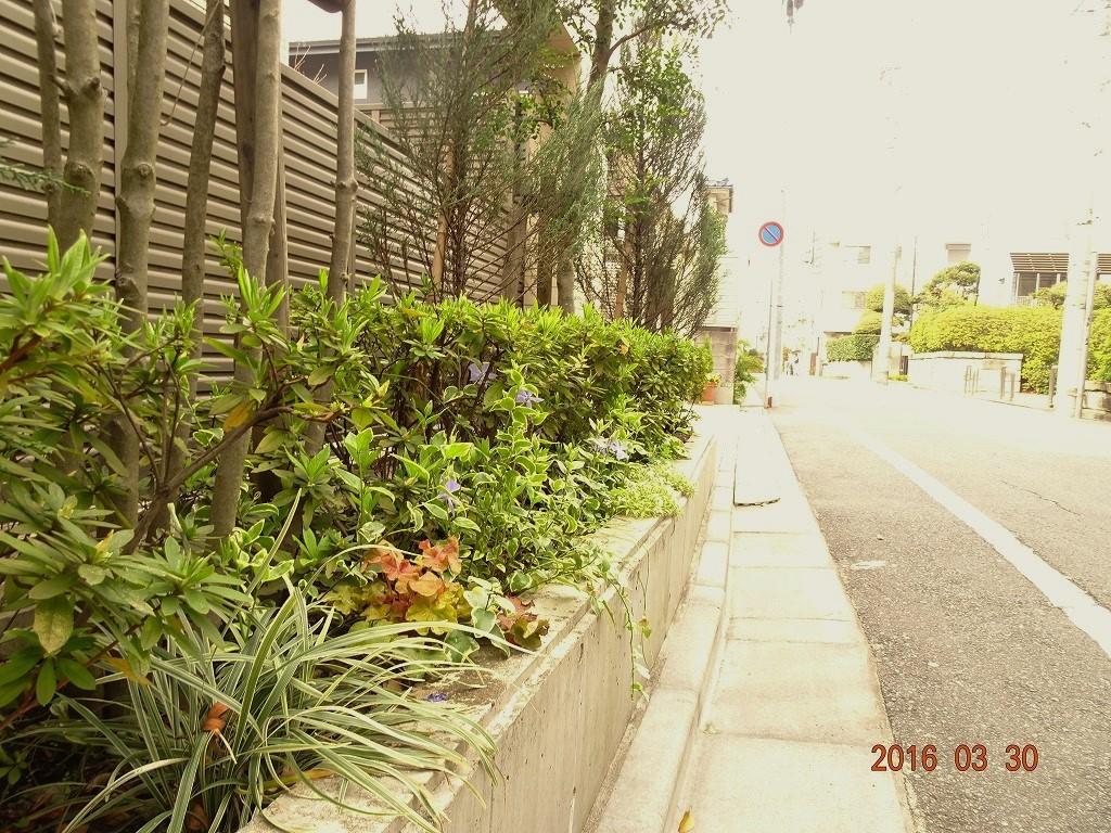 フォンテーヌ駒沢 道路側花壇
