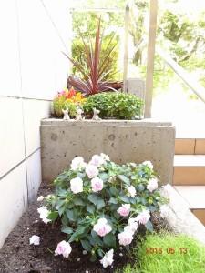 フォンテーヌ駒沢花壇